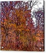 Transitions - Painterly Acrylic Print