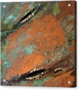 Transitory Marks II Acrylic Print