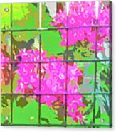 Trapped Flowers Acrylic Print