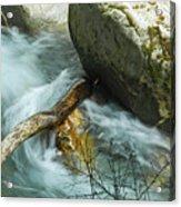 Trapped River Log Acrylic Print