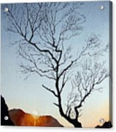 Tree Above Crummock Water Acrylic Print
