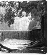 Tree And Dam Acrylic Print