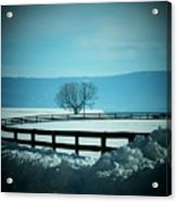Tree And Fence In Snow Acrylic Print