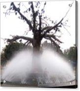 Tree And Fountain Acrylic Print