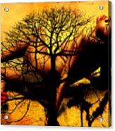 Tree And Her Acrylic Print