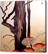 Tree And Mushrooms Acrylic Print