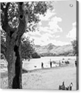 Tree And People By The Lake Acrylic Print
