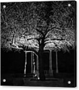 Tree And Swing Acrylic Print