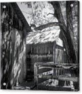 Tree And The Barn Acrylic Print