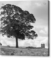 Tree And The Cage Tower In The Distance In Lyme Park Estate In B Acrylic Print