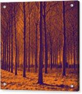 Tree Art 56y Acrylic Print