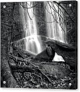 Tree At Falls In Black And White Acrylic Print