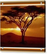 Tree At Sunset. L B With Decorative Ornate Printed Frame. Acrylic Print