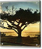 Tree At Vacation Island Acrylic Print