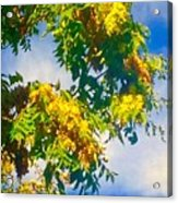 Tree Branch With Leaves In Blue Sky Acrylic Print