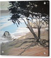Tree By The Sea By Betty Acrylic Print