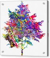 Tree-colorful Acrylic Print