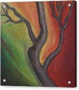 Tree Dancing Acrylic Print