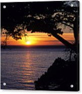 Tree Framing Seascape Sunset Acrylic Print by Ali ONeal - Printscapes