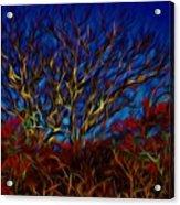 Tree Glow In The Dark Acrylic Print