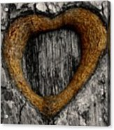 Tree Graffiti Heart Acrylic Print