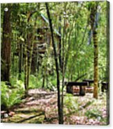 Tree House In The Woods Acrylic Print