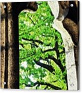 Tree In A Medieval Frame Acrylic Print