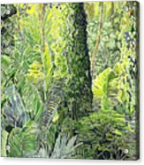 Tree In Garden Acrylic Print