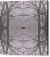 Tree In The Fog - Monadnock 1 Acrylic Print