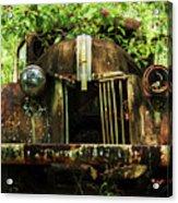 Tree In Truck Acrylic Print