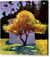 Tree Acrylic Print