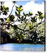 Tree Limb Over Water 2 Acrylic Print