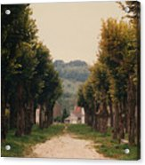 Tree Lined Pathway In Lyon France Acrylic Print