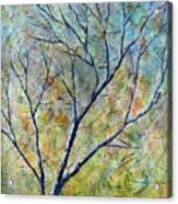 Tree Number One Acrylic Print