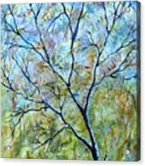Tree Number Two Acrylic Print