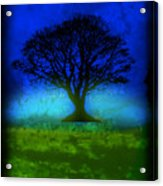Tree Of Life - Blue Skies Acrylic Print by Robert R Splashy Art