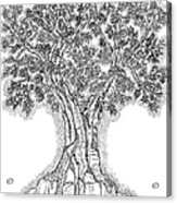 Tree Of Life 1 Acrylic Print