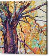 Tree Of Life And Wisdom   Acrylic Print