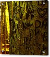 Tree Of Love Acrylic Print