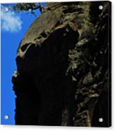 Tree On A Cliff At Battleship Rock New Mexico - 003 Acrylic Print