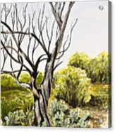 Tree Painting Acrylic Print