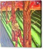 Tree Perspective Acrylic Print
