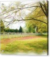 Tree Series 1324 Acrylic Print