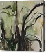 Tree Series V Acrylic Print
