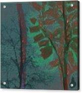 Tree Shadows At Midnight Acrylic Print