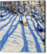 Tree Shadows Morzine Acrylic Print