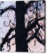 #tree Silhouette Acrylic Print