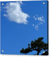 Tree Sky Cloud Acrylic Print