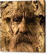 Tree Spirit Acrylic Print