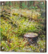 Tree Stump In Vikersund Acrylic Print